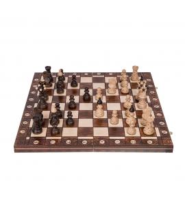 Chess Ambasador